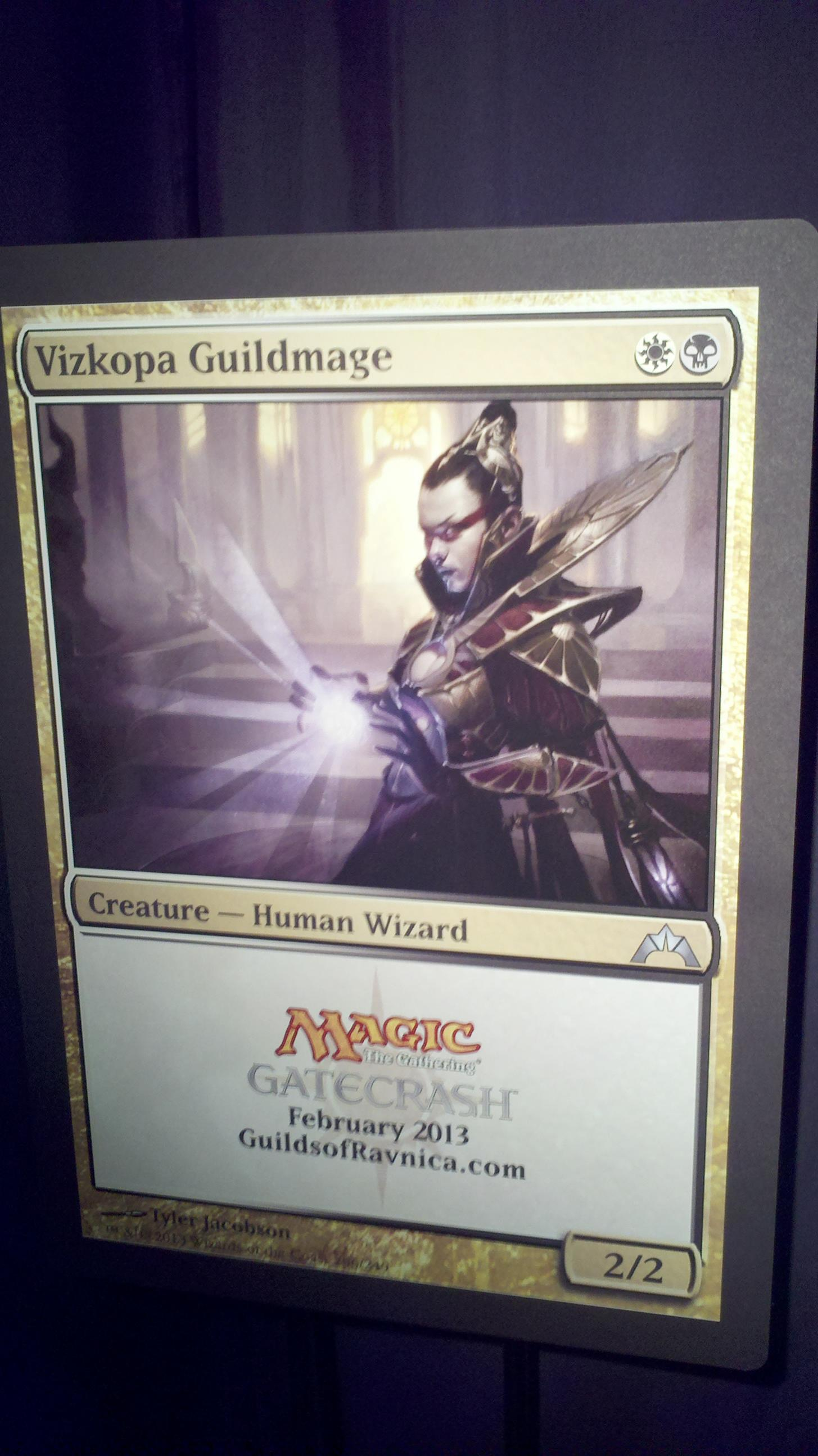 Vizkopa Guildmage