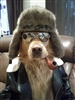 Dox Quaidly's avatar