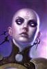 sefenvold's avatar