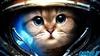 HamBone651's avatar