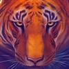 Nightfirecat's avatar