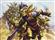 friendofpa's avatar
