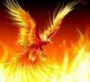 Blair Phoenix's avatar